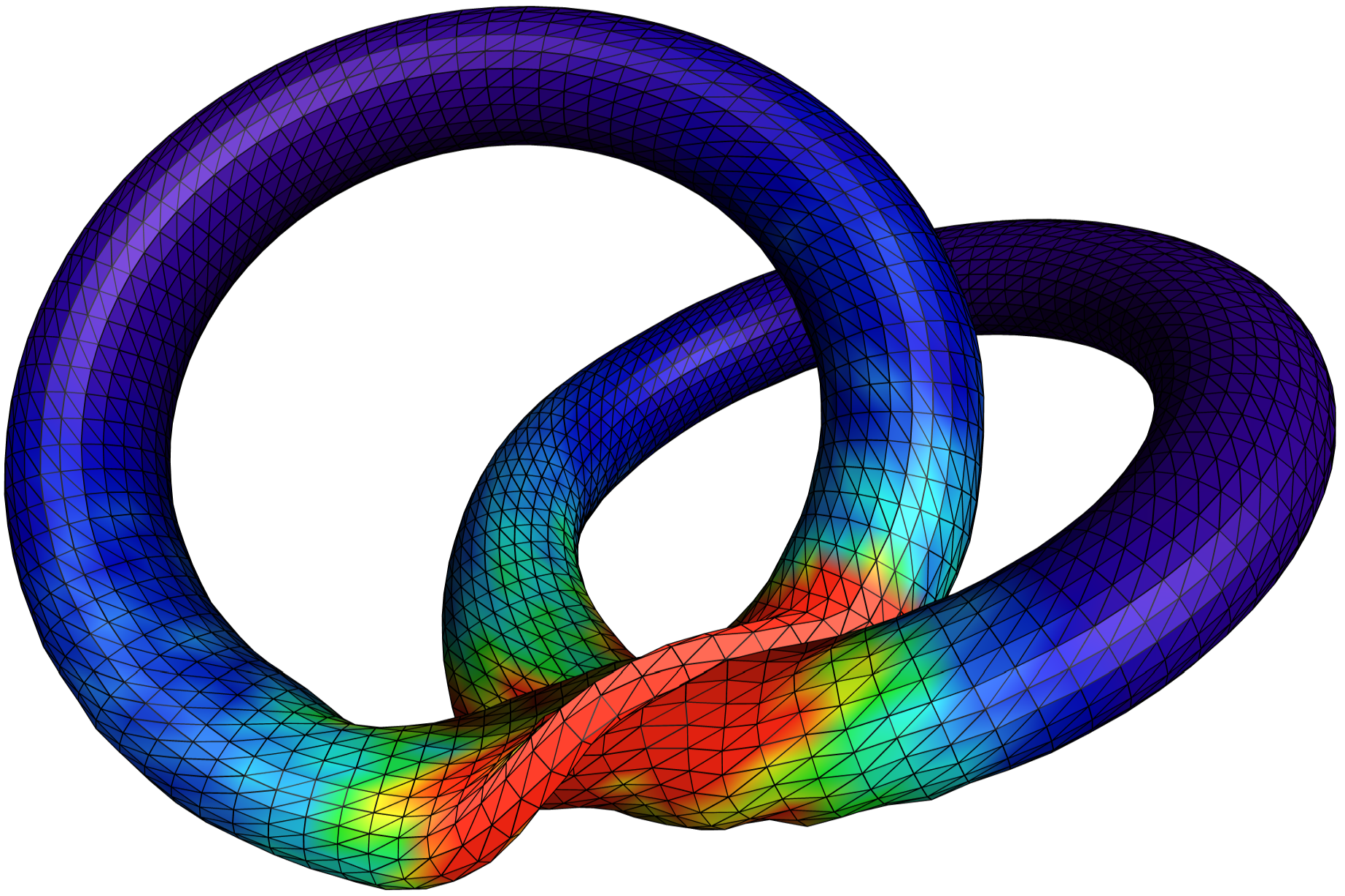 static/img/example-large-deformation-torus.png